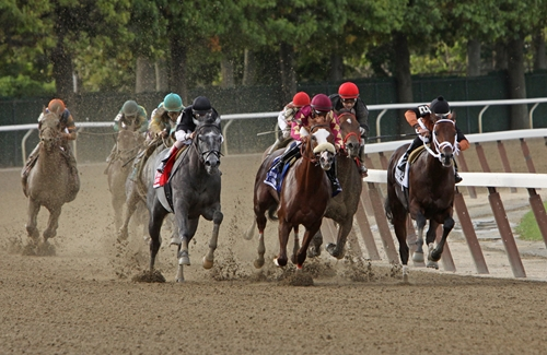 The Belmont Stakes were a huge disappointment for Triple Crown hopeful California Chrome.