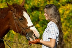 Be sure your horse always remains well-fed.