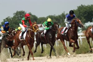 Racehorse names are often an homage to their bloodline.