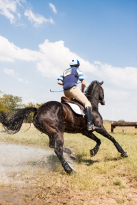 performance horse eventing