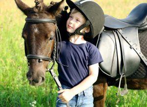 A bond between a horse and boy