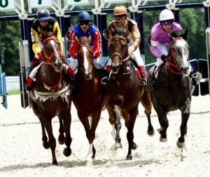 Drafting, or slipstreaming, can preserve much-needed energy for a horse during a race.