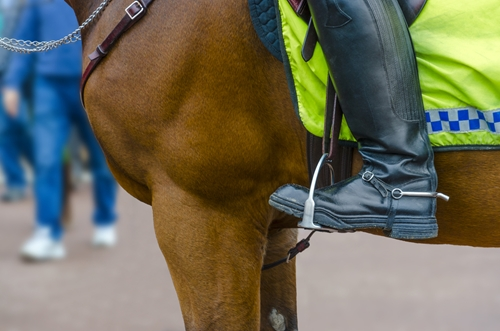 People tend to have friendlier reactions with police officers on horses, according to a new study.