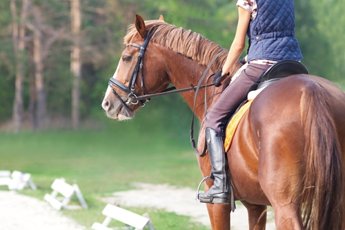 3 of the best destinations to go horseback riding
