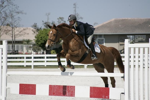 Leslie Burr Howard took home 3rd place and $50,000 at Holiday & Horses Grand Prix CSI-W 2.