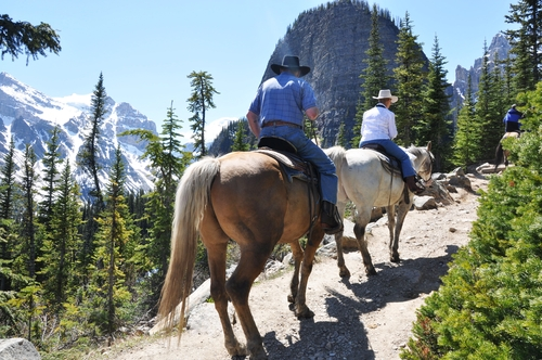 Tricks for riding the trail with your horse