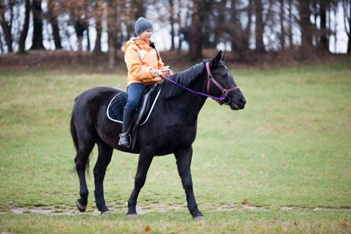 4 health benefits of horseback riding