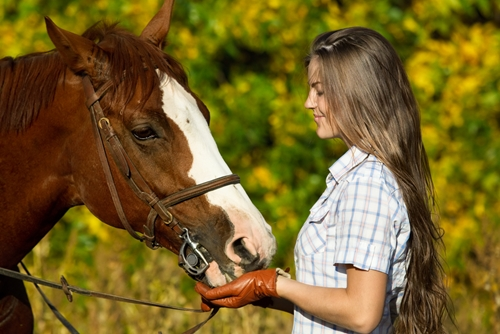 You might need to start adjusting an older horse's diet so they are receiving the vitamins and minerals they need to thrive.