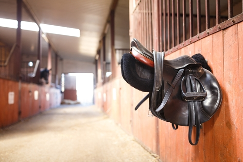 Keep your horse's saddle looking its best by adequately cleaning it after usage.