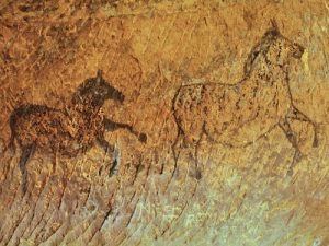 Ancient DNA samples have helped researchers recognize different species of prehistoric spotted horses.