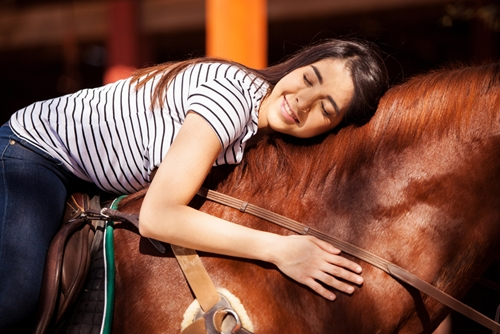 A new procedure is helping horses suffering from blindness.
