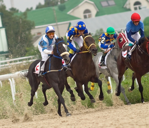 A recent study shows racehorses are continuously getting faster.
