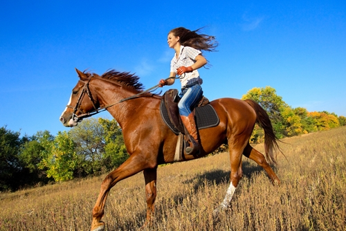 Horseback riding is a great exercise for humans.