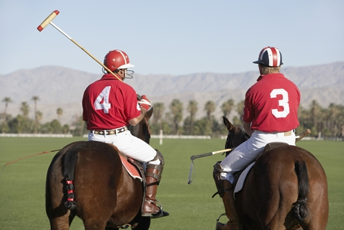 Polo is a favored event at clubs across Wellington, Florida.
