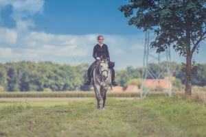 things to do with horses in the summer