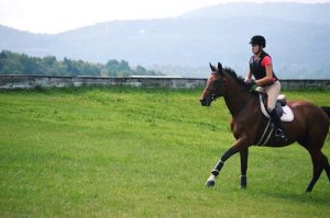 your horse's condition helps its health