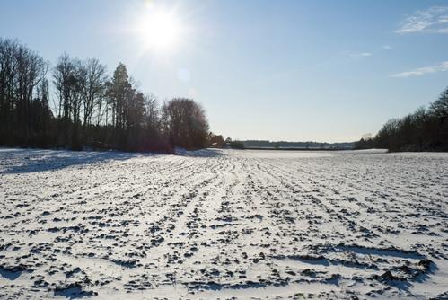 prepare pasture for winter