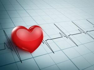 Vets use electrocardiographs and other tests to diagnose heart conditions.