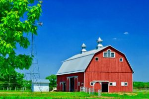 Keep your barn well ventilated to promote horse health.