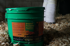 An application of poultice can help a horse heal after an abscess or keep their legs in optimal shape following intense exercise.