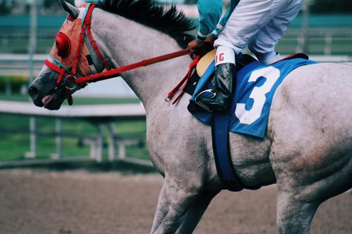Be sure to replenish electrolytes in horses who've sweated to avoid thumps.