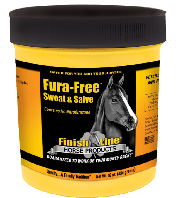 safe ointment for horses