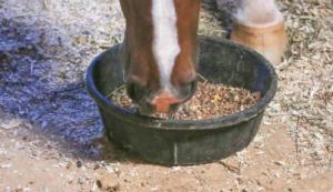 monesin in horses feed