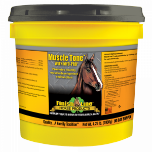 muscle building supplement for horses