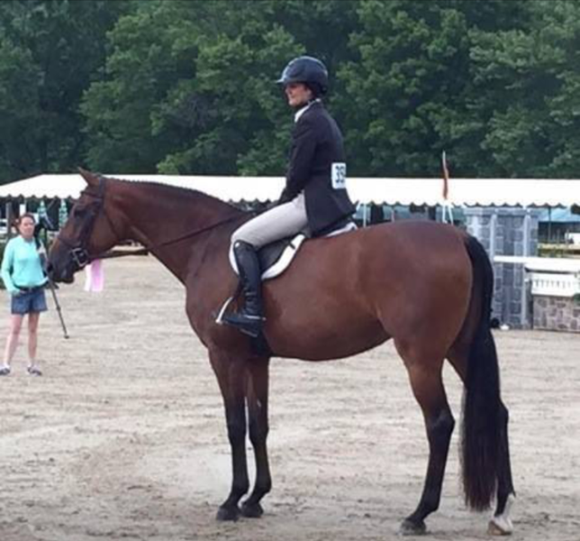 hunter jumper pony testimonial