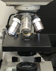 microscope in finish line horse products lab