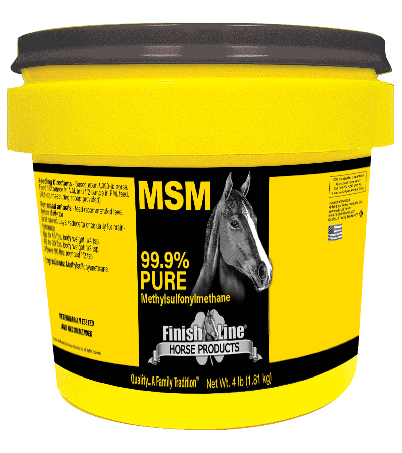 MSM for horse joints