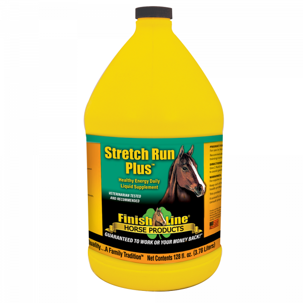 Recovery supplement for performance horses