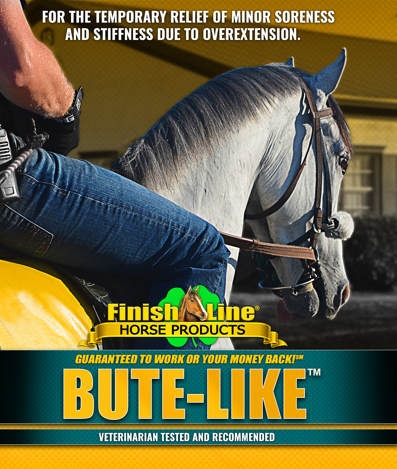 Your horse's comfort matters | INTRODUCING BUTE LIKE™