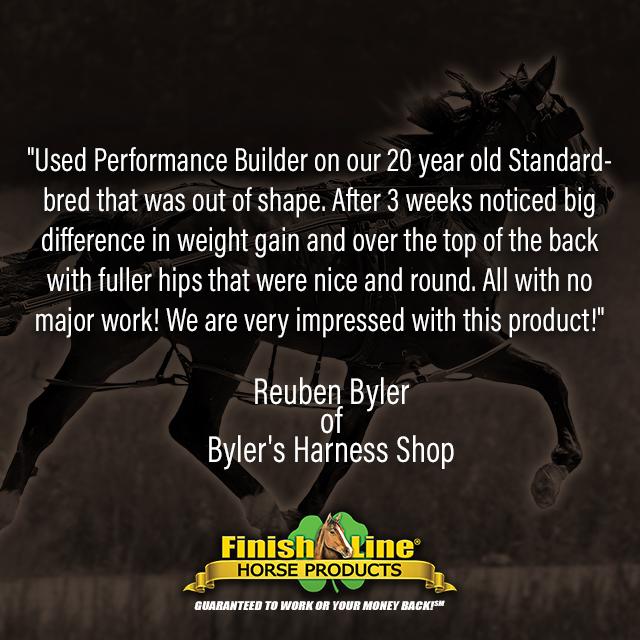 Standardbred race horse testimonial