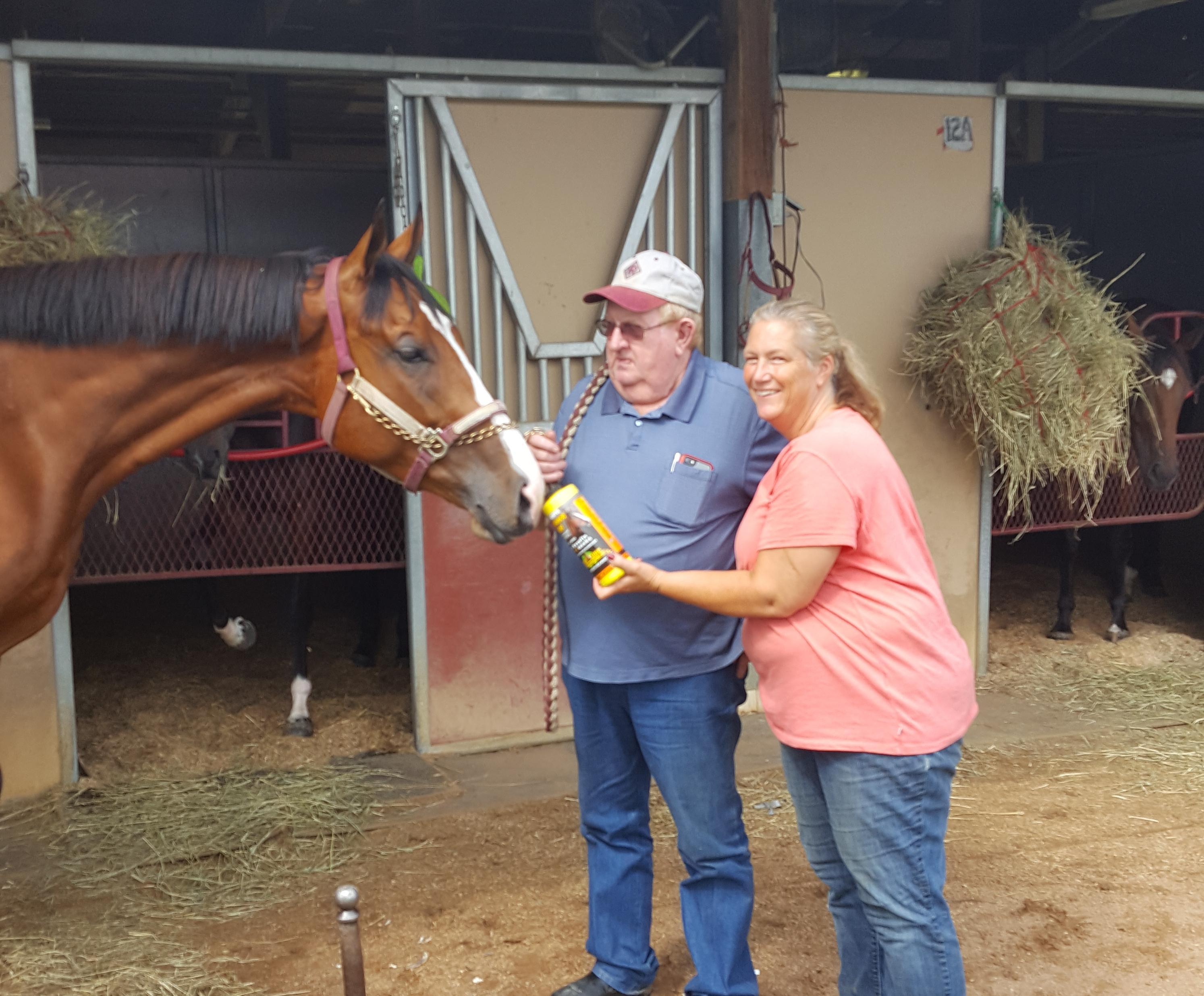 Race horse on Performance Builder testimonial