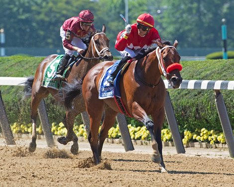 Letruska race horse