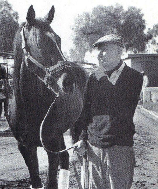 CHARLIE WHITTINGHAM Finish Line Horse