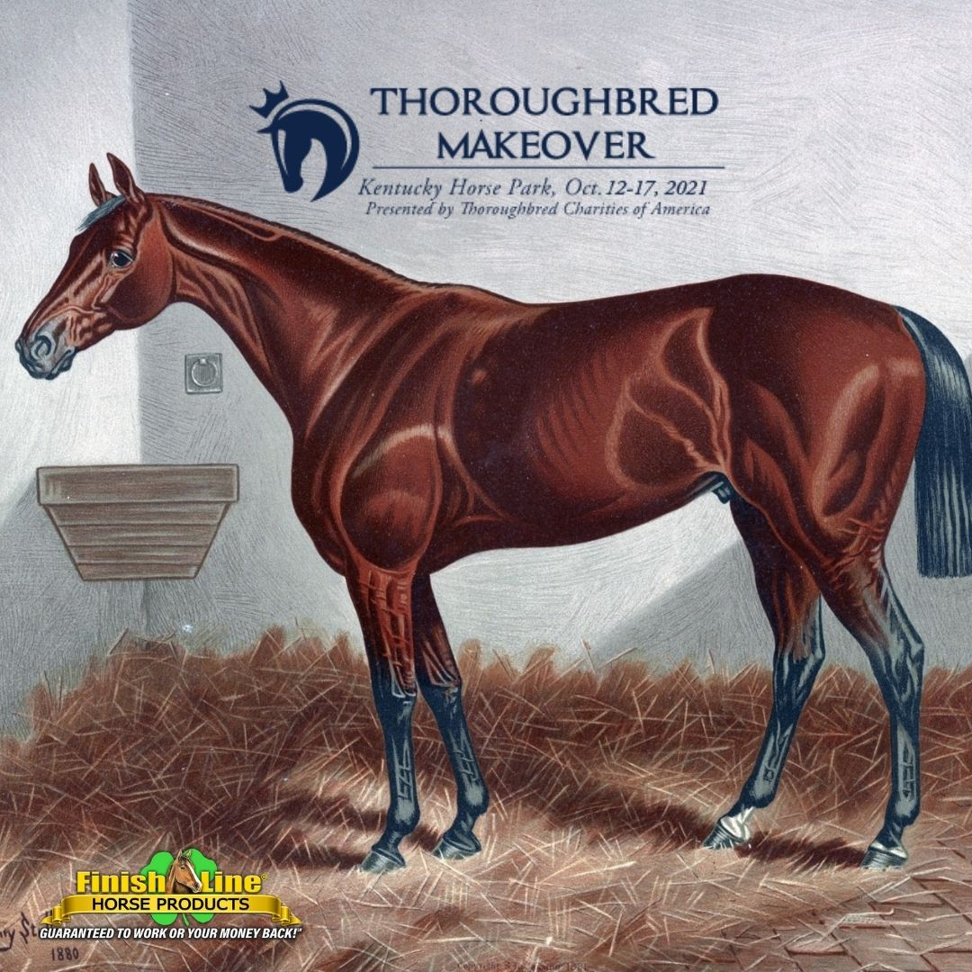 Retired Racehorse Project FInish Line